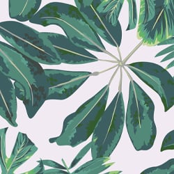 Mixed Tropical Leaves Wallpaper Mural Murals Wallpaper Tropical leaf palm print, showing various tropical plants together in one poster. mixed tropical leaves wallpaper mural